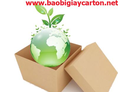 Bao bì vì môi trường, bao bì carton, thùng carton giá rẻ