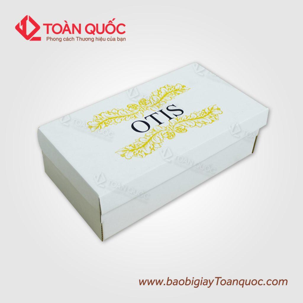CUNG CAP HOP GIAY BAO BI GIAY TOAN QUOC (4)