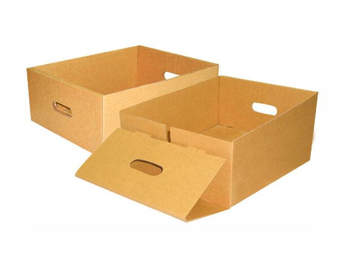 thung-carton-giare